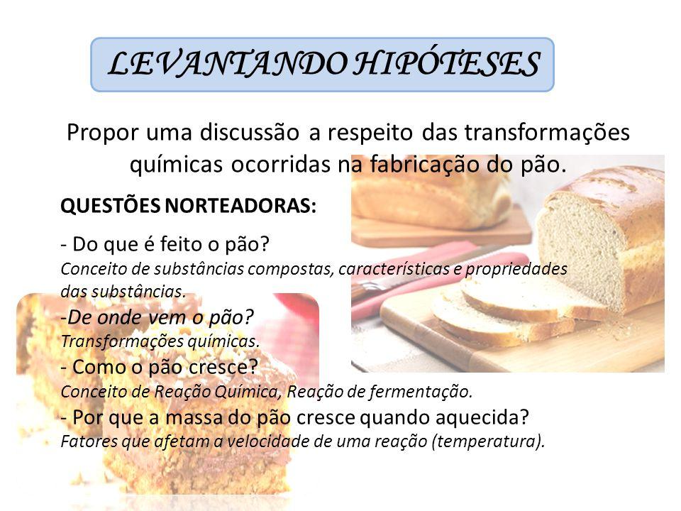 LEVANTANDO HIPÓTESES Propor uma discussão a respeito das transformações químicas ocorridas na fabricação do pão. QUESTÕES NORTEADORAS: - Do que é feit