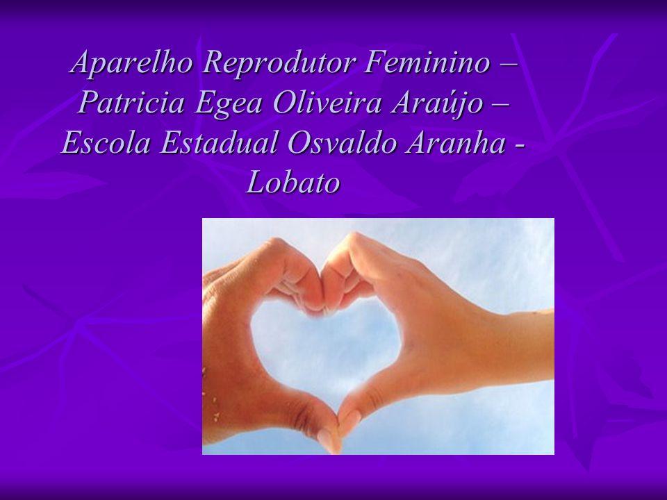 Aparelho Reprodutor Feminino – Patricia Egea Oliveira Araújo – Escola Estadual Osvaldo Aranha - Lobato