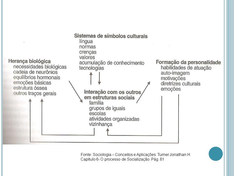 Fonte: Sociologia – Conceitos e Aplicações. Turner Jonathan H. Capitulo 6- O processo de Socialização. Pág. 81