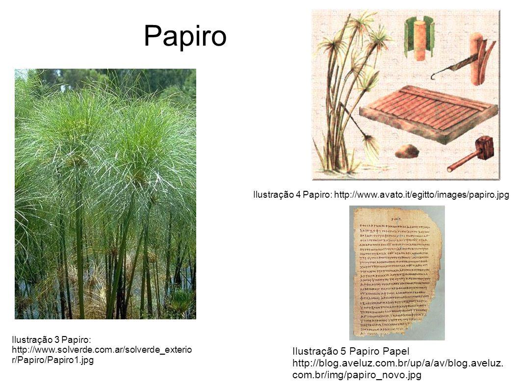 Papiro Ilustração 3 Papiro: http://www.solverde.com.ar/solverde_exterio r/Papiro/Papiro1.jpg Ilustração 4 Papiro: http://www.avato.it/egitto/images/papiro.jpg Ilustração 5 Papiro Papel http://blog.aveluz.com.br/up/a/av/blog.aveluz.