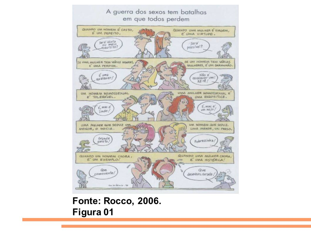 Fonte: Rocco, 2006. Figura 01