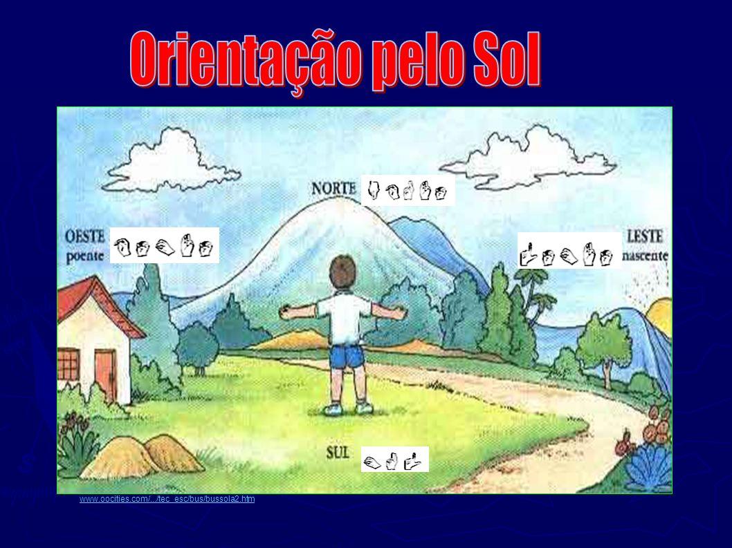 www.oocities.com/.../tec_esc/bus/bussola2.htm