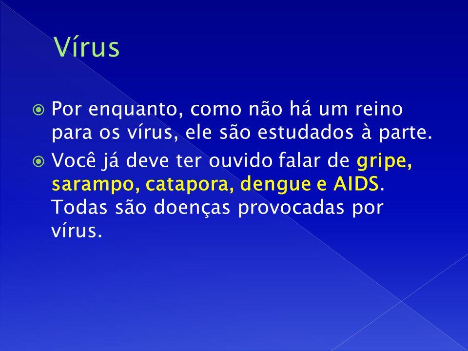 Por enquanto, como não há um reino para os vírus, ele são estudados à parte.
