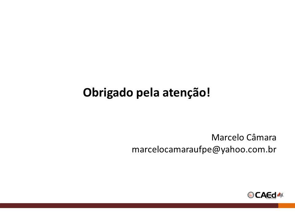 Obrigado pela atenção! Marcelo Câmara marcelocamaraufpe@yahoo.com.br