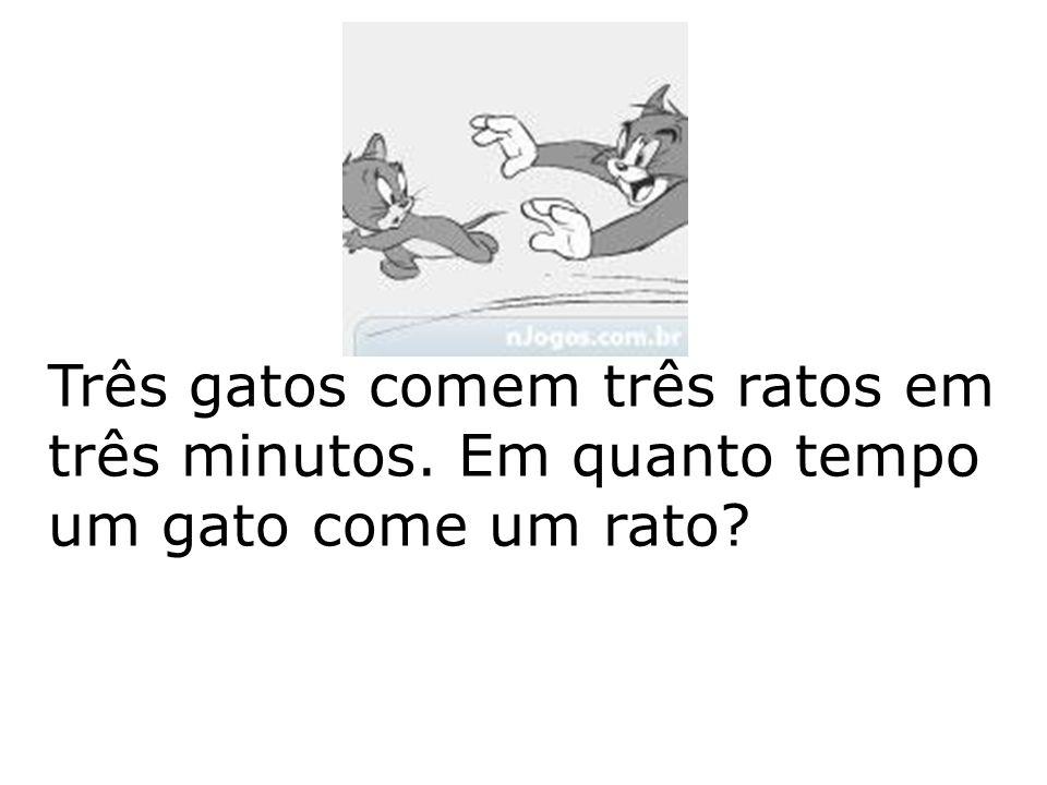 Três gatos comem três ratos em três minutos. Em quanto tempo um gato come um rato?