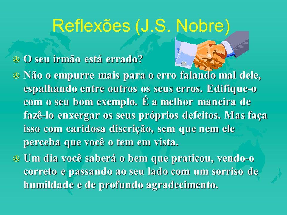 Reflexões (J.S.Nobre) > O seu irmão está errado.