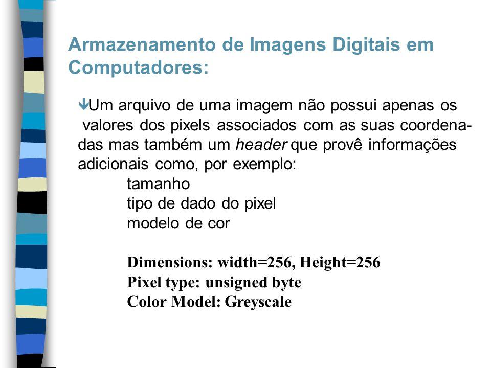 Armazenamento de Imagens Digitais em Computadores: ê Um arquivo de uma imagem não possui apenas os valores dos pixels associados com as suas coordena-