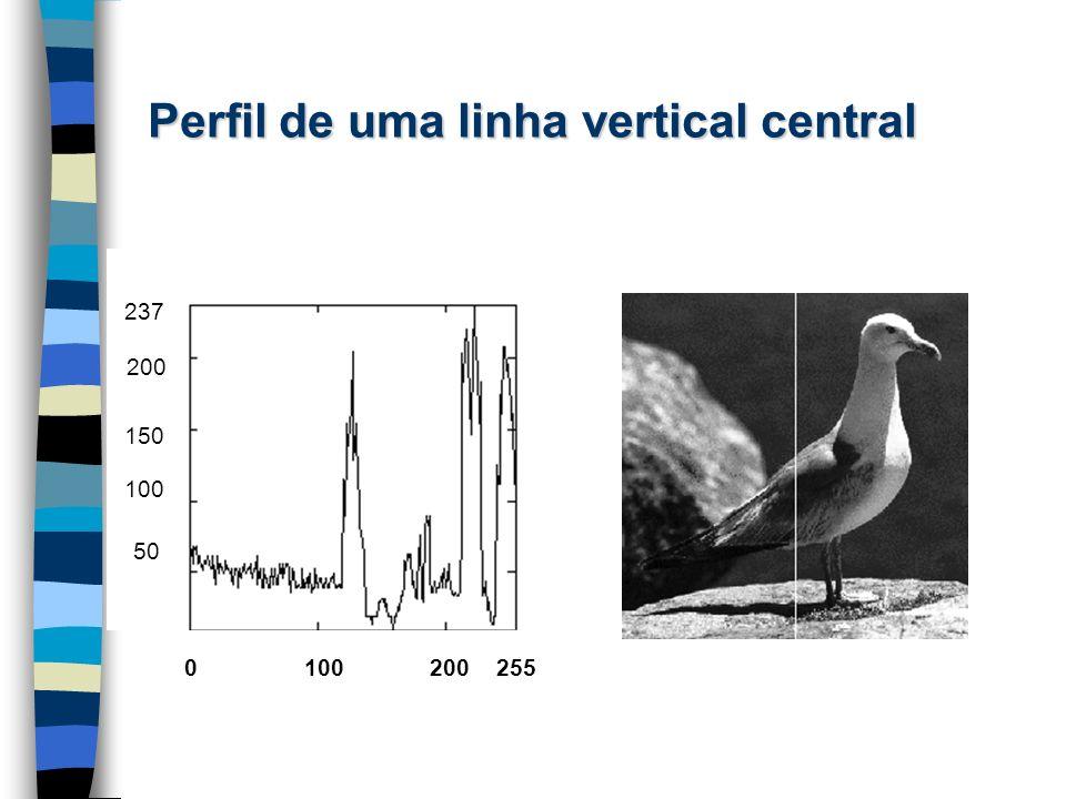 Perfil de uma linha vertical central n 0 100 200 255 50 100 150 200 237