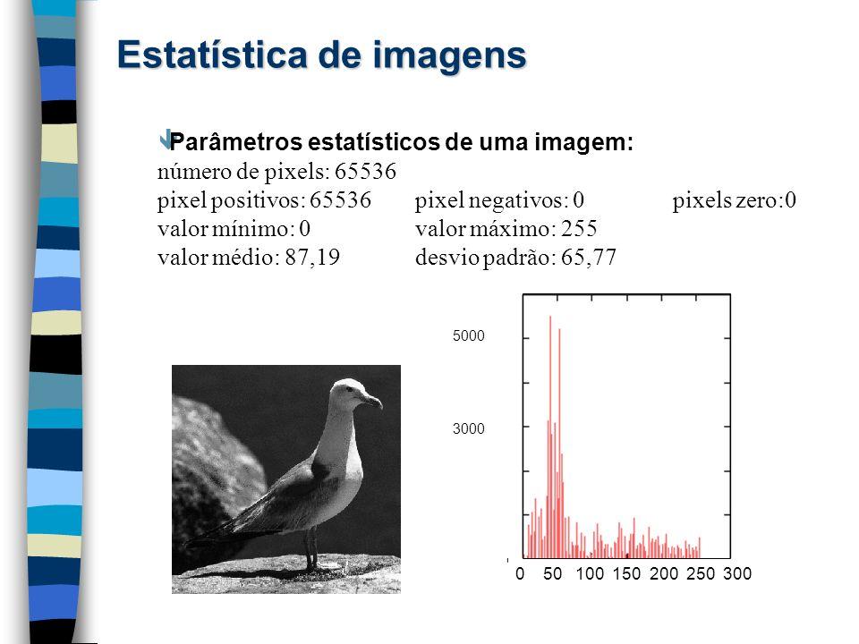 Estatística de imagens êParâmetros estatísticos de uma imagem: número de pixels: 65536 pixel positivos: 65536pixel negativos: 0 pixels zero:0 valor mí