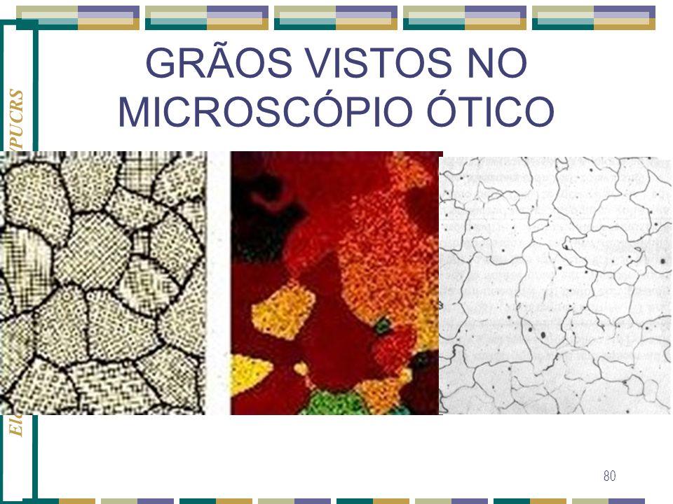 Eleani Maria da Costa - PGETEMA/PUCRS 80 GRÃOS VISTOS NO MICROSCÓPIO ÓTICO