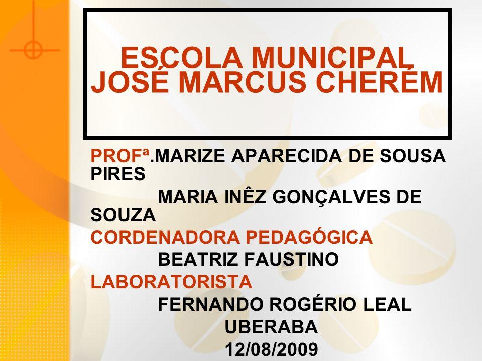 ESCOLA MUNICIPAL JOSÉ MARCUS CHERÉM PROFª.MARIZE APARECIDA DE SOUSA PIRES MARIA INÊZ GONÇALVES DE SOUZA CORDENADORA PEDAGÓGICA BEATRIZ FAUSTINO LABORA