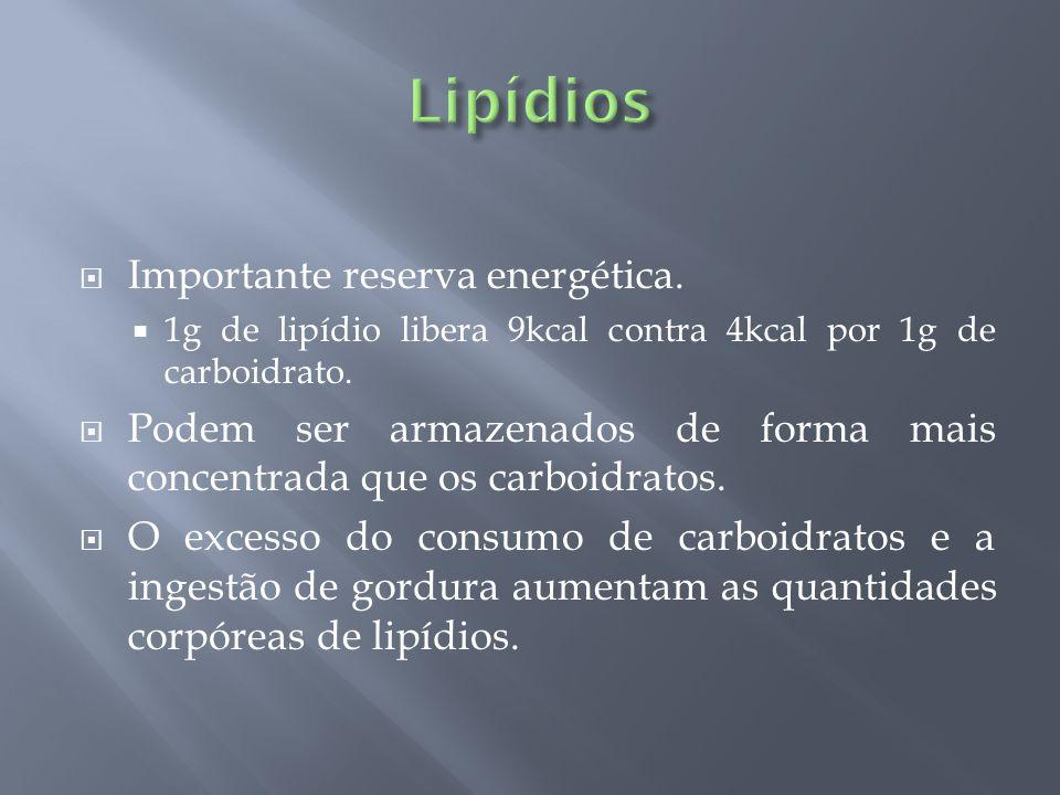 Importante reserva energética. 1g de lipídio libera 9kcal contra 4kcal por 1g de carboidrato. Podem ser armazenados de forma mais concentrada que os c