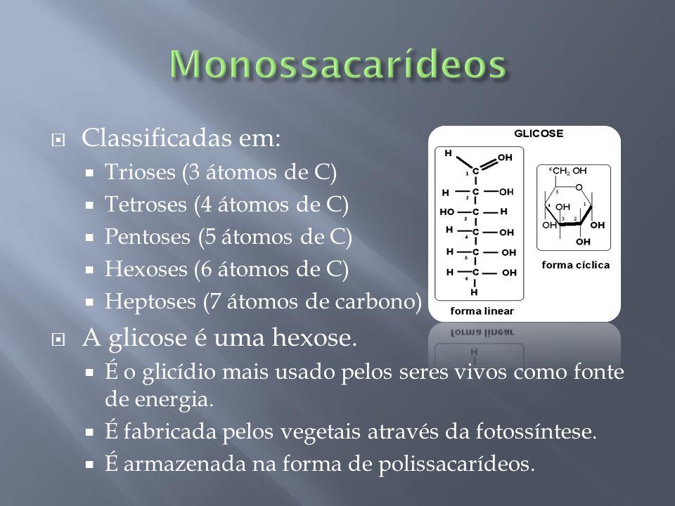 Classificadas em: Trioses (3 átomos de C) Tetroses (4 átomos de C) Pentoses (5 átomos de C) Hexoses (6 átomos de C) Heptoses (7 átomos de carbono) A g