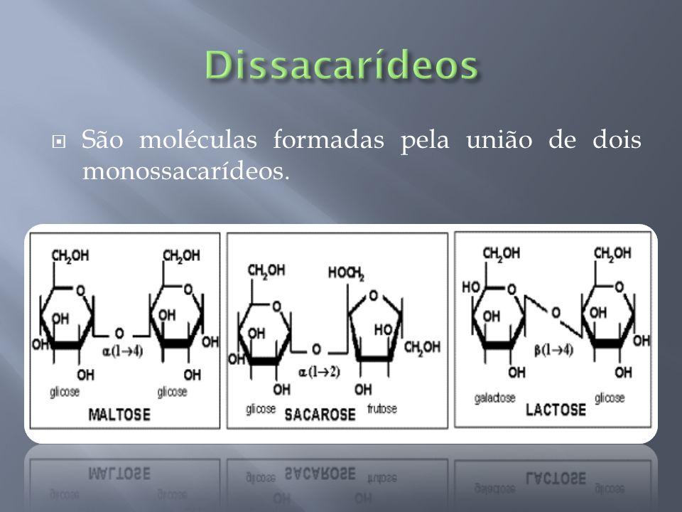 São moléculas formadas pela união de dois monossacarídeos.