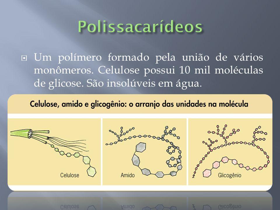 Um polímero formado pela união de vários monômeros. Celulose possui 10 mil moléculas de glicose. São insolúveis em água.