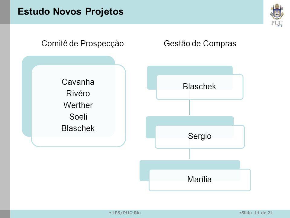 Slide 14 de 21 LES/PUC-Rio Cavanha Rivéro Werther Soeli Blaschek Sergio Marília Comitê de ProspecçãoGestão de Compras Estudo Novos Projetos