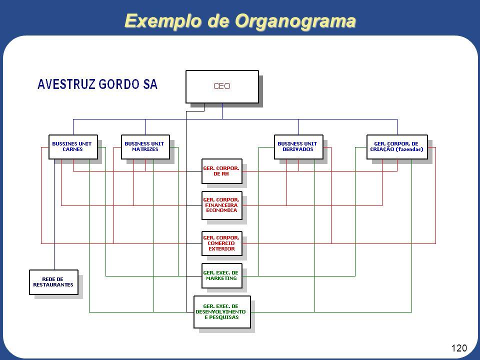 119 3. Roteiro para elaboração do Projeto de Negócios 5 – ESTRUTURA ORGANIZACIONAL 5.2 – Lay Out da Estrutura Organizacional Definição dos perfis dos