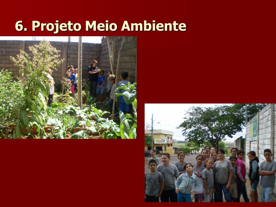 6. Projeto Meio Ambiente