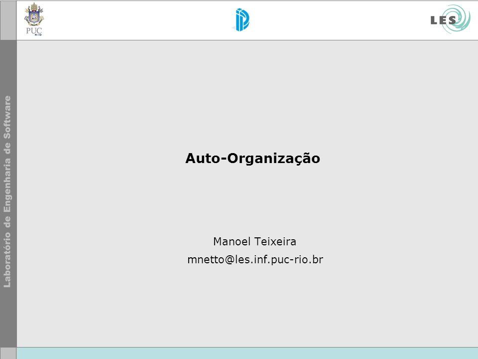 Auto-Organização Manoel Teixeira mnetto@les.inf.puc-rio.br