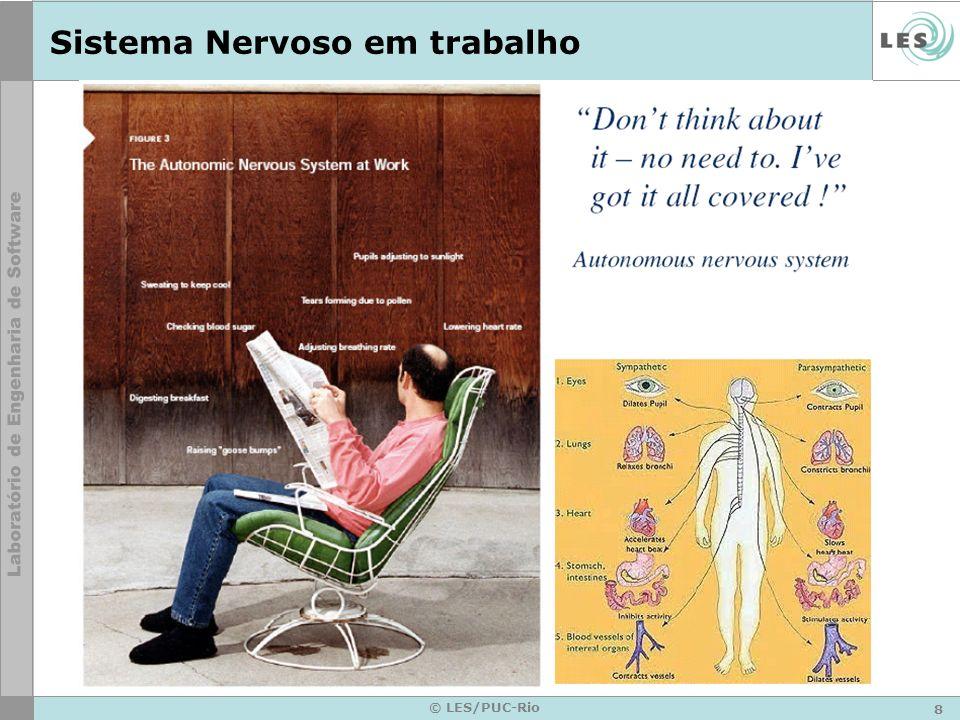 8 © LES/PUC-Rio Sistema Nervoso em trabalho