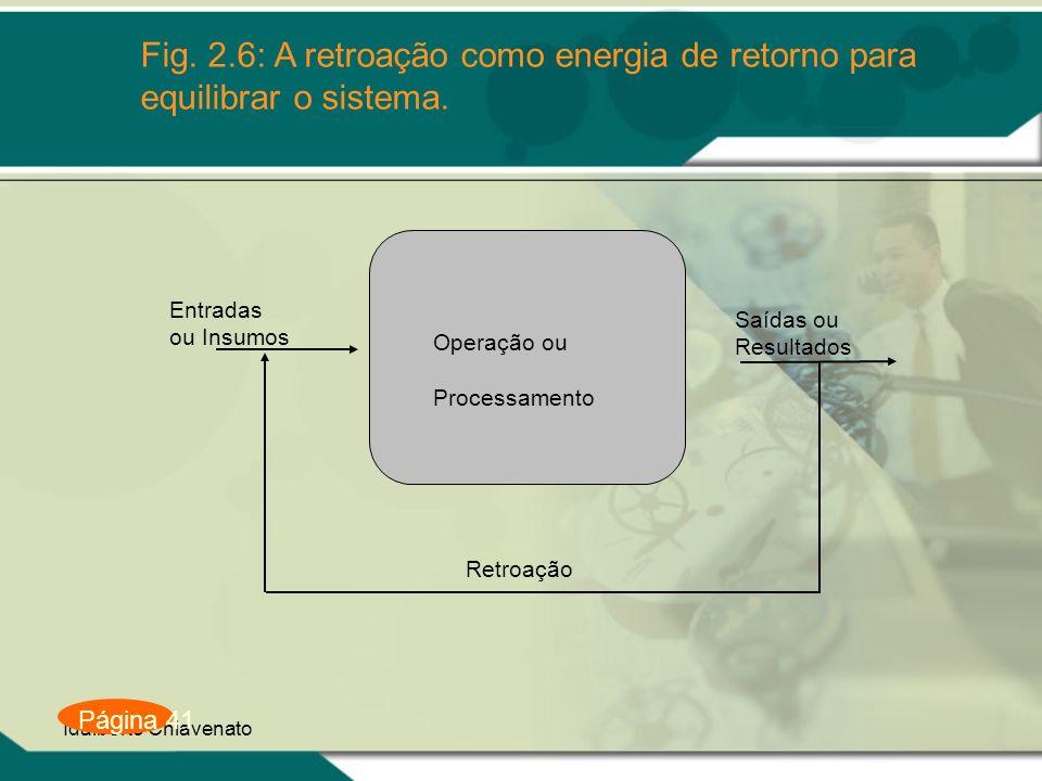 Idalberto Chiavenato Fig. 2.6: A retroação como energia de retorno para equilibrar o sistema. Página 41 Retroação Saídas ou Resultados Operação ou Pro
