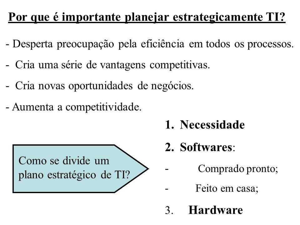 Por que é importante planejar estrategicamente TI? - Desperta preocupação pela eficiência em todos os processos. - Cria uma série de vantagens competi
