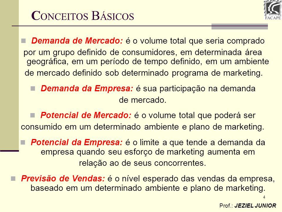 4 Demanda de Mercado: é o volume total que seria comprado por um grupo definido de consumidores, em determinada área geográfica, em um período de temp