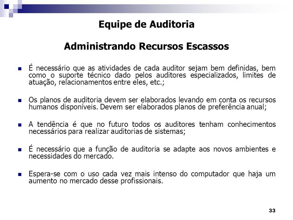 33 É necessário que as atividades de cada auditor sejam bem definidas, bem como o suporte técnico dado pelos auditores especializados, limites de atua