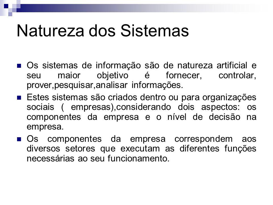 Natureza dos Sistemas Os sistemas de informação são de natureza artificial e seu maior objetivo é fornecer, controlar, prover,pesquisar,analisar infor