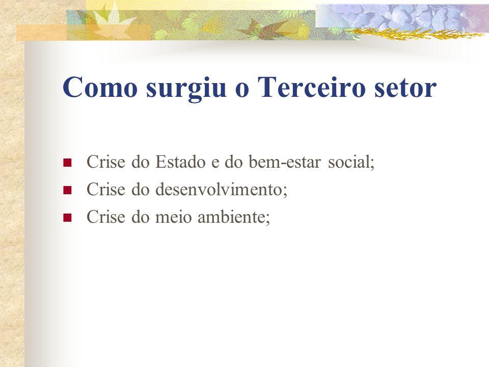 Como surgiu o Terceiro setor Crise do Estado e do bem-estar social; Crise do desenvolvimento; Crise do meio ambiente;