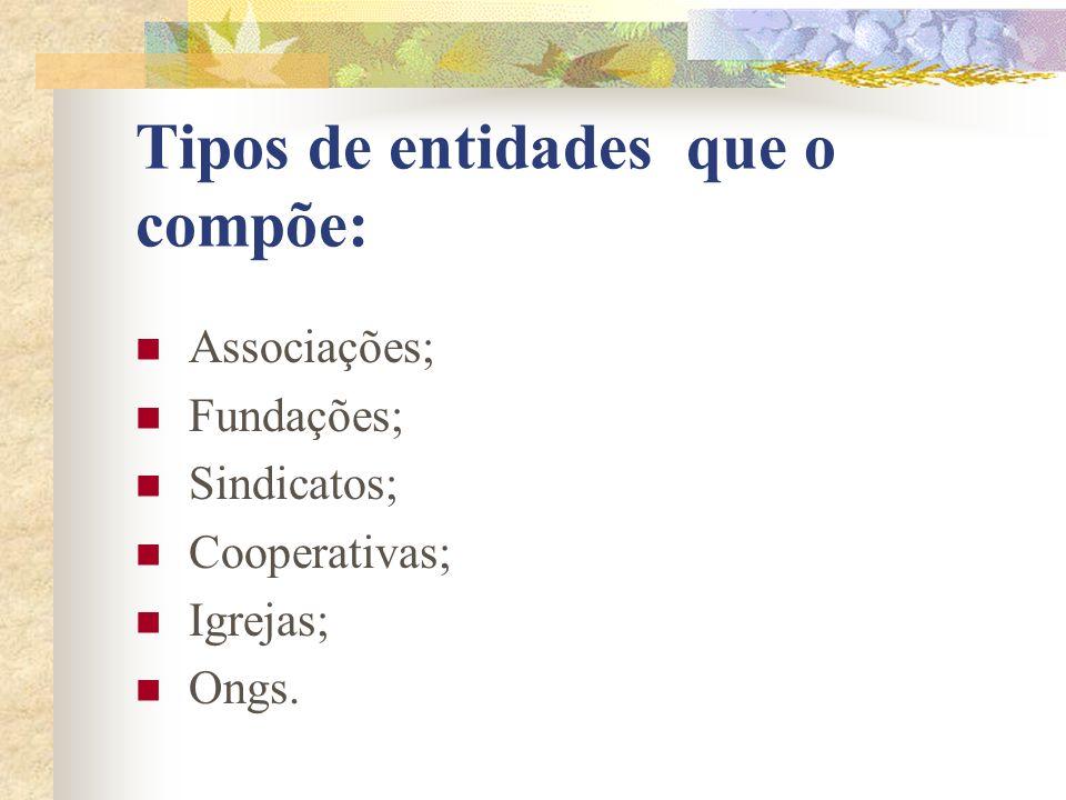 Tipos de entidades que o compõe: Associações; Fundações; Sindicatos; Cooperativas; Igrejas; Ongs.