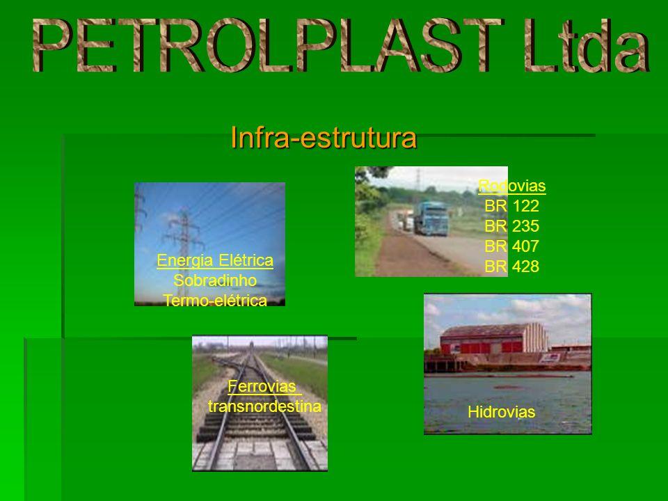 Infra-estrutura Hidrovias Ferrovias transnordestina Rodovias BR 122 BR 235 BR 407 BR 428 Energia Elétrica Sobradinho Termo-elétrica