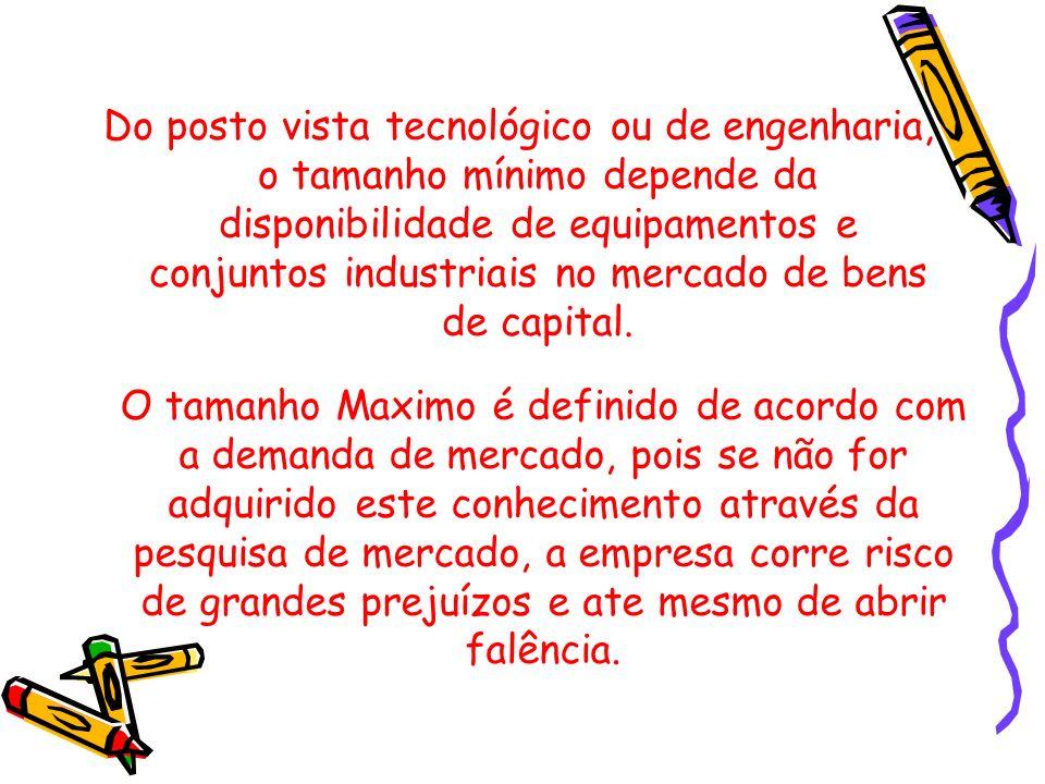 Do posto vista tecnológico ou de engenharia, o tamanho mínimo depende da disponibilidade de equipamentos e conjuntos industriais no mercado de bens de