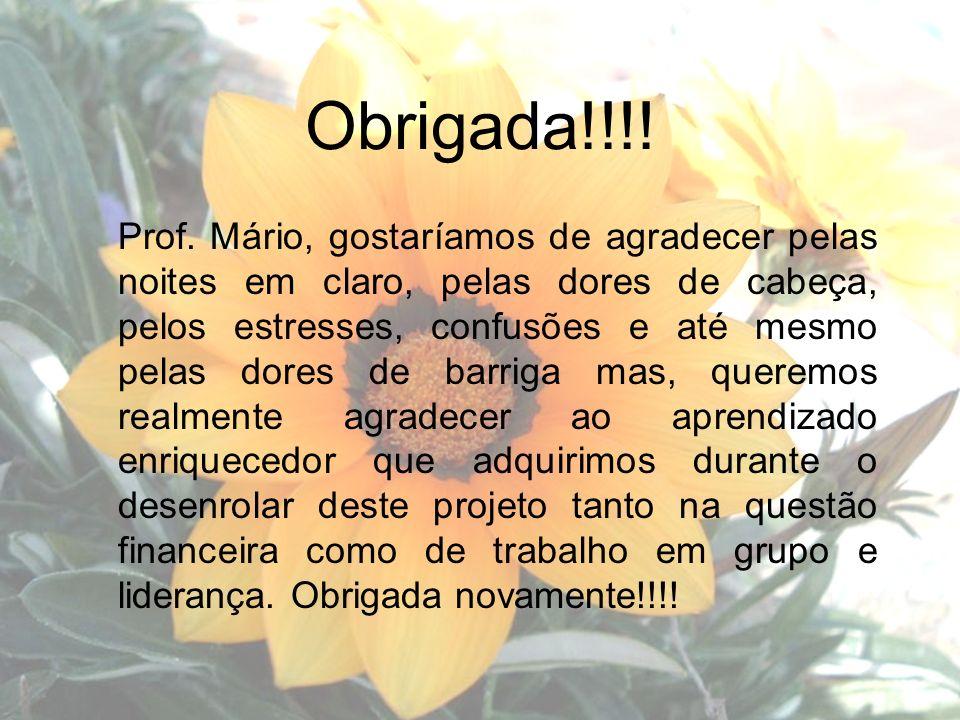 Obrigada!!!! Prof. Mário, gostaríamos de agradecer pelas noites em claro, pelas dores de cabeça, pelos estresses, confusões e até mesmo pelas dores de