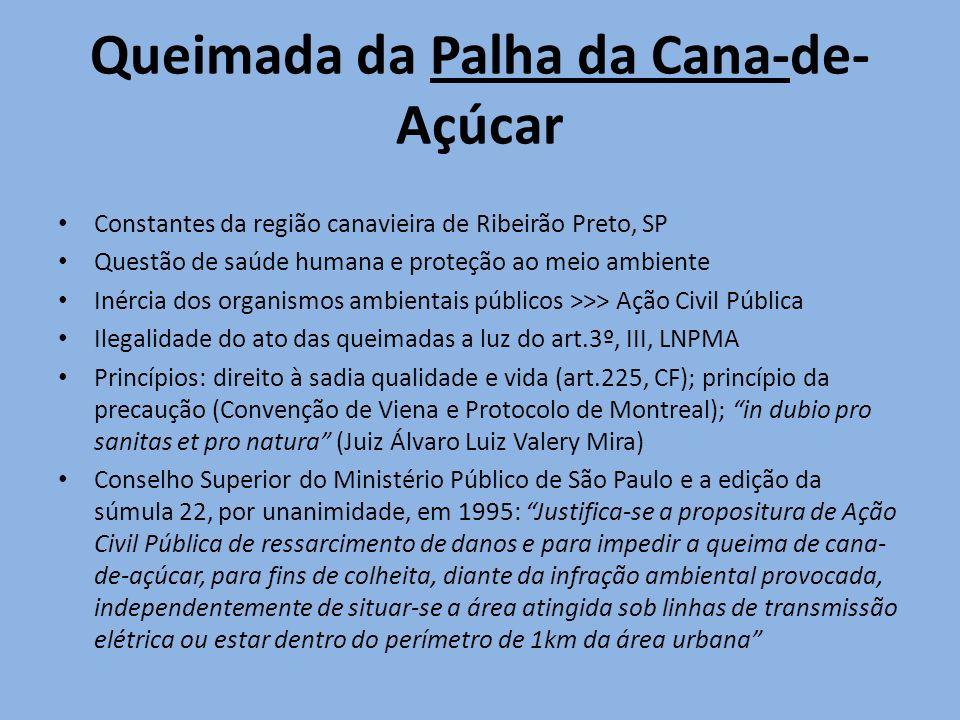 Queimada da Palha da Cana-de- Açúcar Constantes da região canavieira de Ribeirão Preto, SP Questão de saúde humana e proteção ao meio ambiente Inércia
