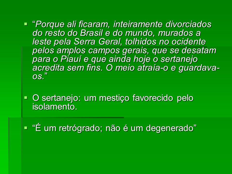 Porque ali ficaram, inteiramente divorciados do resto do Brasil e do mundo, murados a leste pela Serra Geral, tolhidos no ocidente pelos amplos campos