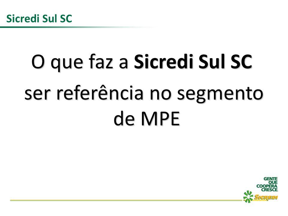 Sicredi Sul SC O que faz a Sicredi Sul SC ser referência no segmento de MPE ser referência no segmento de MPE