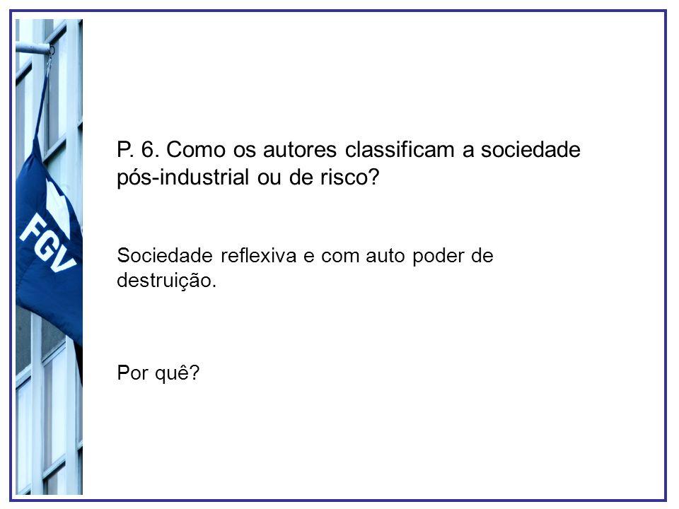 P. 6. Como os autores classificam a sociedade pós-industrial ou de risco? Sociedade reflexiva e com auto poder de destruição. Por quê?