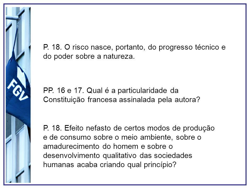 P. 18. O risco nasce, portanto, do progresso técnico e do poder sobre a natureza. PP. 16 e 17. Qual é a particularidade da Constituição francesa assin