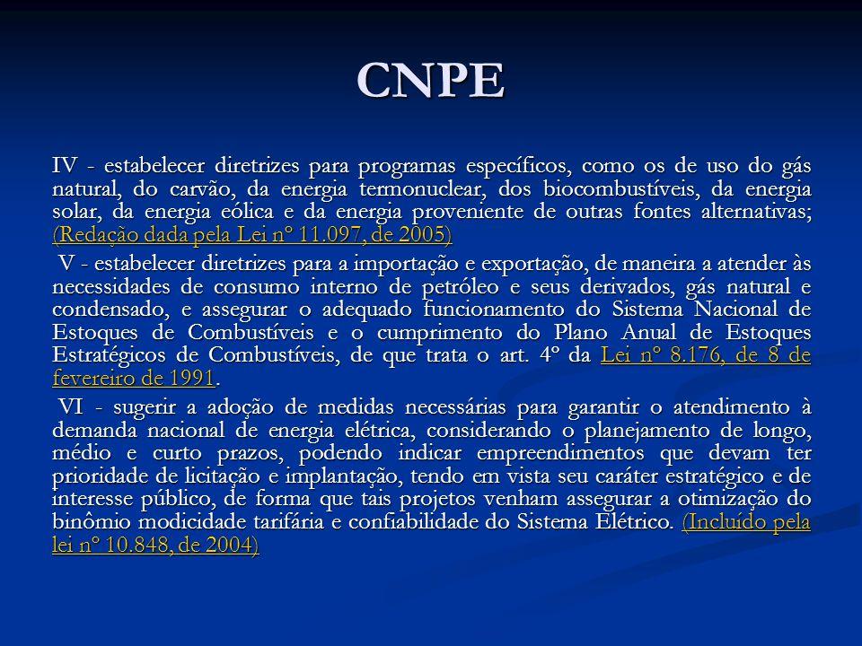 CNPE IV - estabelecer diretrizes para programas específicos, como os de uso do gás natural, do carvão, da energia termonuclear, dos biocombustíveis, d
