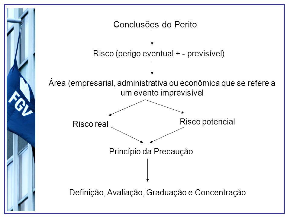 Conclusões do Perito Risco (perigo eventual + - previsível) Área (empresarial, administrativa ou econômica que se refere a um evento imprevisível Risc