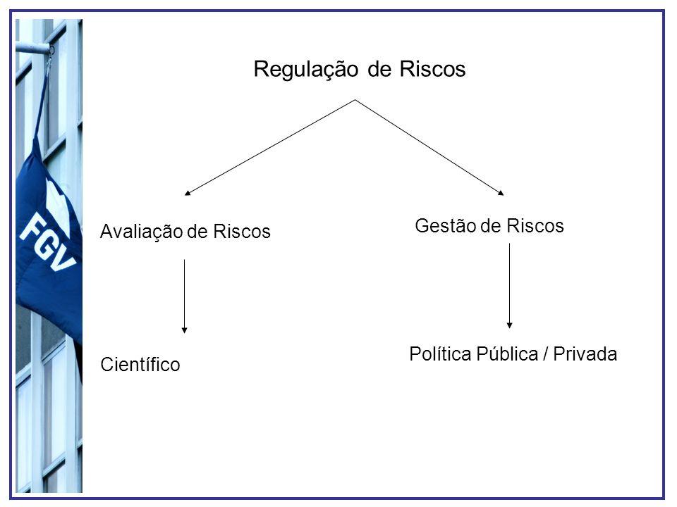 Solução para o problema da Regulação de Risco Algo muito parecido com o CADE (Conselho Administrativo de Defesa Econômica) – Órgão de defesa do monopólio natural.