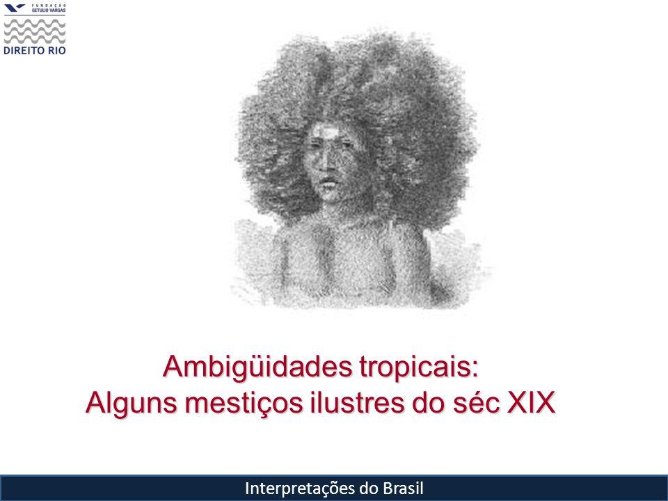 Interpretações do Brasil Ambigüidades tropicais: Alguns mestiços ilustres do séc XIX