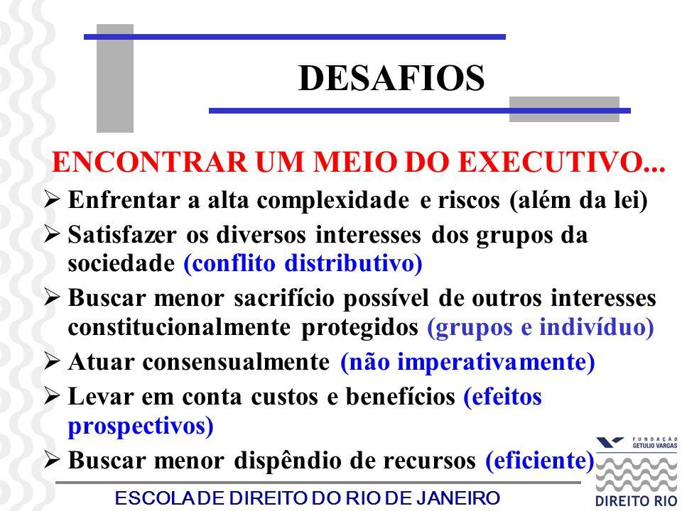 ESCOLA DE DIREITO DO RIO DE JANEIRO DESAFIOS ENCONTRAR UM MEIO DO EXECUTIVO... Enfrentar a alta complexidade e riscos (além da lei) Satisfazer os dive