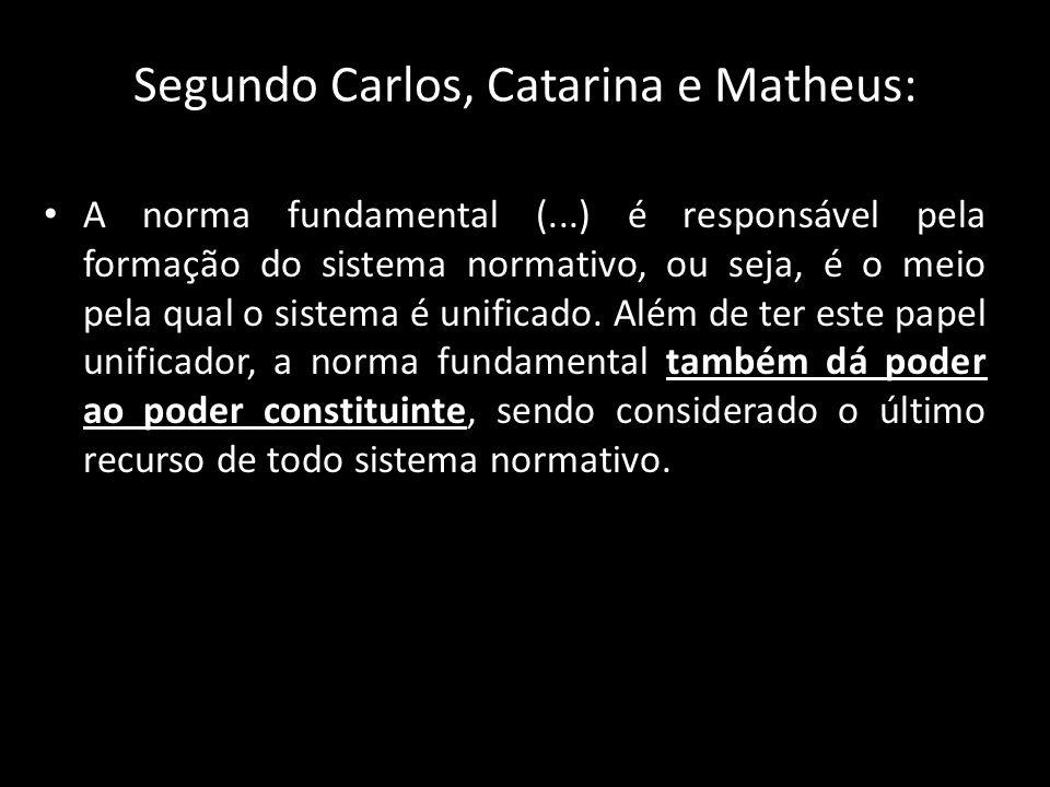 Segundo Carlos, Catarina e Matheus: A norma fundamental (...) é responsável pela formação do sistema normativo, ou seja, é o meio pela qual o sistema
