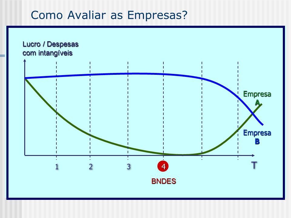 Como Avaliar as Empresas? EmpresaA Lucro / Despesas com intangíveis T T 2 2 3 3 1 1 4 4 BNDES EmpresaB