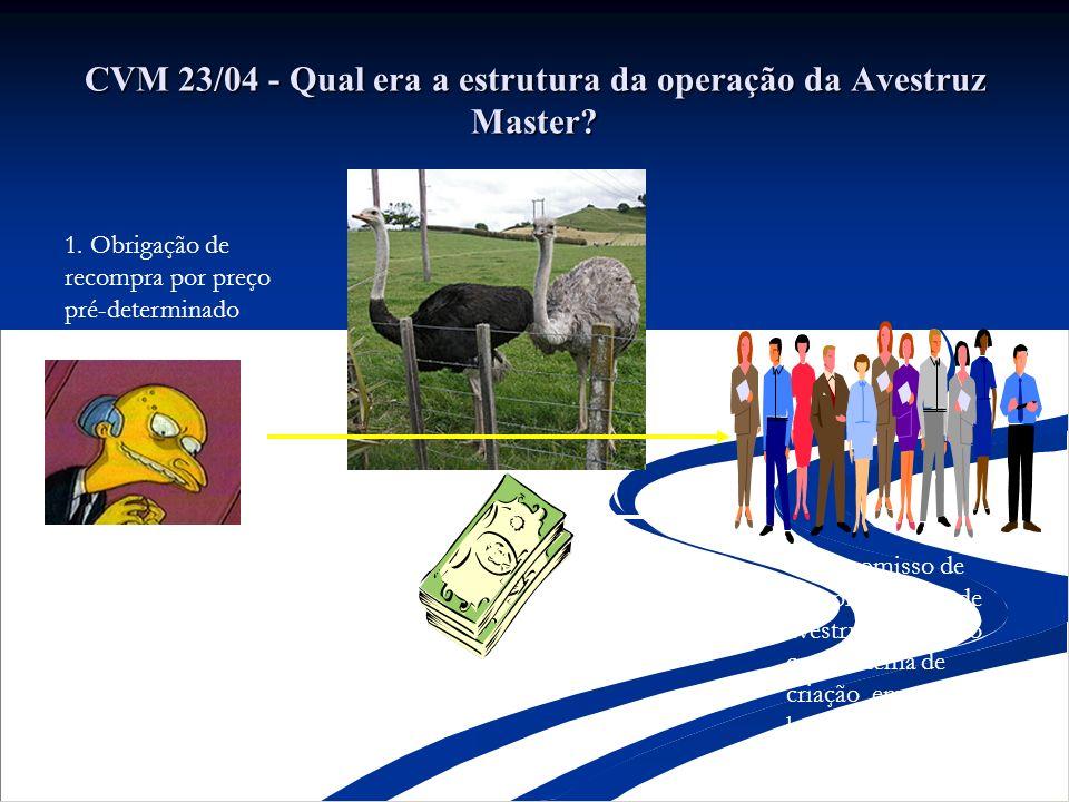 CVM 23/04 - Qual era a estrutura da operação da Avestruz Master? Compromisso de compra e venda de avestruz cumulado com sistema de criação em hotelari