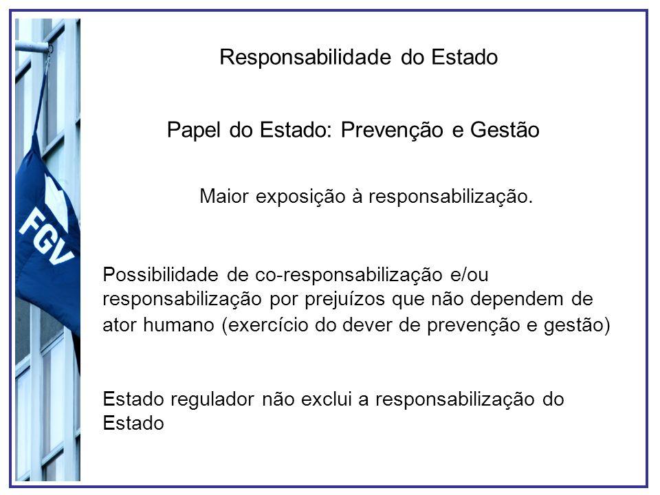Responsabilidade do Estado Papel do Estado: Prevenção e Gestão Maior exposição à responsabilização. Possibilidade de co-responsabilização e/ou respons