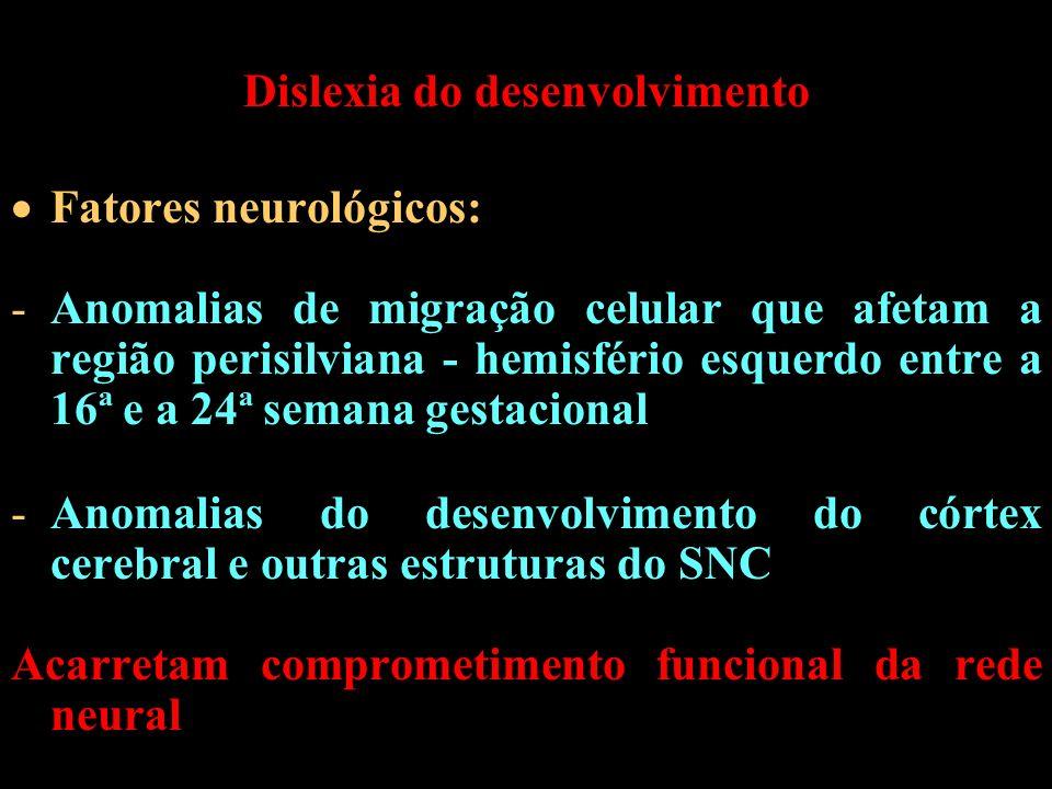 Dislexia do desenvolvimento Fatores neurológicos: -Anomalias de migração celular que afetam a região perisilviana - hemisfério esquerdo entre a 16ª e