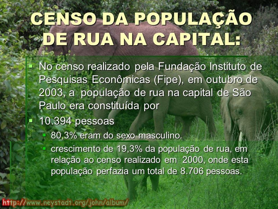CENSO DA POPULAÇÃO DE RUA NA CAPITAL: No censo realizado pela Fundação Instituto de Pesquisas Econômicas (Fipe), em outubro de 2003, a população de rua na capital de São Paulo era constituída por No censo realizado pela Fundação Instituto de Pesquisas Econômicas (Fipe), em outubro de 2003, a população de rua na capital de São Paulo era constituída por 10.394 pessoas 10.394 pessoas 80,3% eram do sexo masculino.
